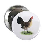 "Brassy Back Hen 2.25"" Button (100 pack)"