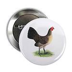 "Brassy Back Hen 2.25"" Button (10 pack)"