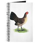 Brassy Back Hen Journal
