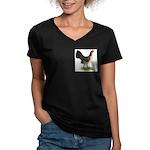 Brassy Back Hen Women's V-Neck Dark T-Shirt