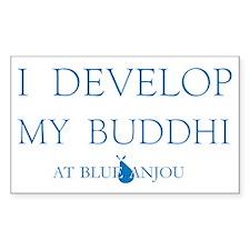 Develope Buddhi Decal