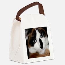 SimonPlain6x6-a Canvas Lunch Bag