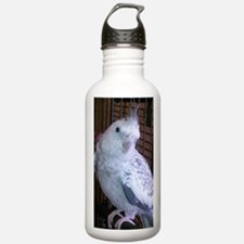 cockatiel 4 1100x1500c Water Bottle