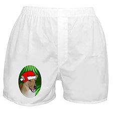 colliesmoothxmas-oval Boxer Shorts