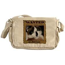 nSWTRANS-r Messenger Bag