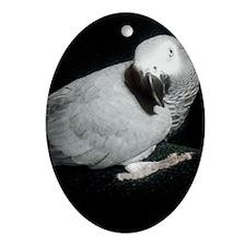 1100x1500gretchen white cropped off  Oval Ornament