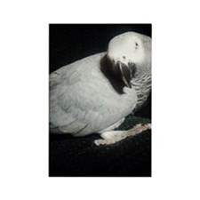 1100x1500gretchen white cropped o Rectangle Magnet