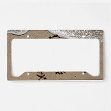 socal_ARIN_sand License Plate Holder