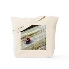FF_P1000706 Tote Bag