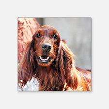 "Irish Setter Dog Square Sticker 3"" x 3"""