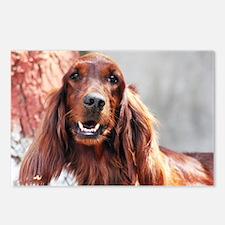 Irish Setter Dog Postcards (Package of 8)