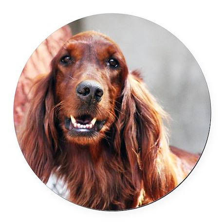 Irish Setter Dog Round Car Magnet