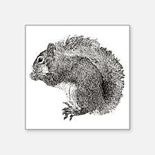 """Squirrel3_v2 Square Sticker 3"""" x 3"""""""