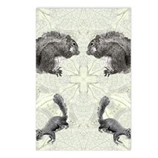 Squirrel FlipFlops Postcards (Package of 8)