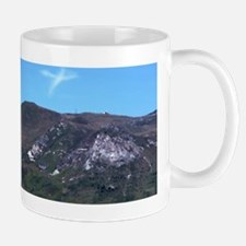 1410_P1000359 Mug