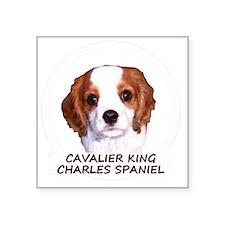 """cavaliercircleTEXTfordark Square Sticker 3"""" x 3"""""""