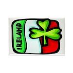 Ireland Flag Shamrock Rectangle Magnet (10 pack)