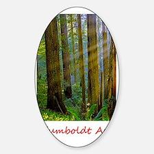 Humboldt Rays.gif Sticker (Oval)
