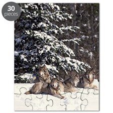 Wolf pack Puzzle