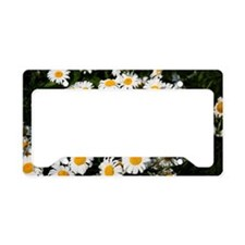 Blooming daisies License Plate Holder