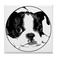 boston-terrier-dogs Tile Coaster