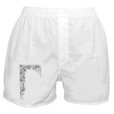 LiquidLibrary Boxer Shorts