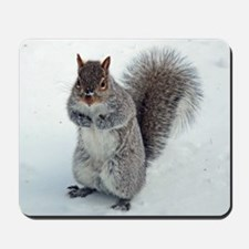Grey Squirrel Mousepad