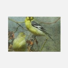 Goldfinch Pair Layered Textures Rectangle Magnet