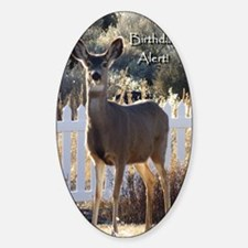 Birthday Alert Doe Deer Sticker (Oval)