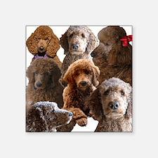 "Poodle Square Sticker 3"" x 3"""