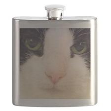 cat eyes Flask