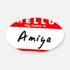 Amiya Oval Car Magnet
