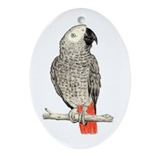 African Grey in Pencil Ornament (Oval)