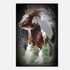 Tonto Postcards (Package of 8)