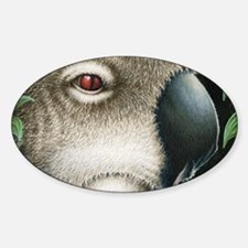 Koala Side (Coin Purse) Decal