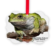 Eastern Gray Tree Frog Ornament