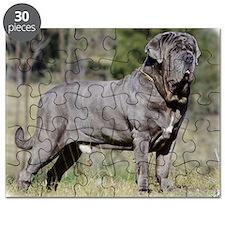 Neapolitan Mastiff AA021D-045 Puzzle