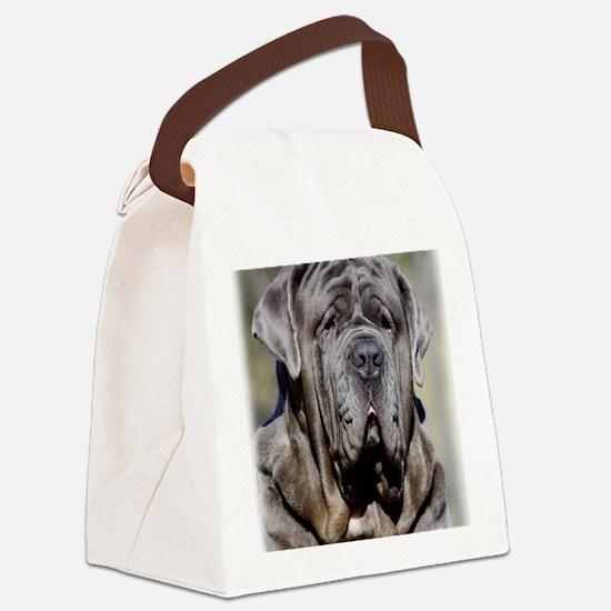 Neapolitan Mastiff AA021D-048 Canvas Lunch Bag