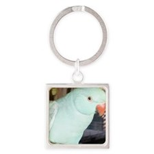 Indian Ringneck Parakeet Square Keychain