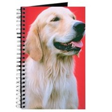 Golden Retriever close up Journal