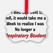 If I died resp student Ornament