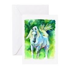 Arabian Horse Art Greeting Cards (Pk of 10)