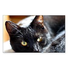 Sleek Black Cat Decal