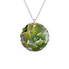 IMGP2995-crop Necklace