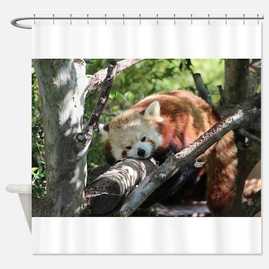 Sleepy Red Panda Shower Curtain