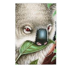 Koala Munching (iphone ca Postcards (Package of 8)