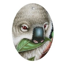 Koala Munching (iphone case 1) Oval Ornament