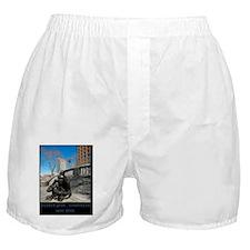 nyny2 Boxer Shorts