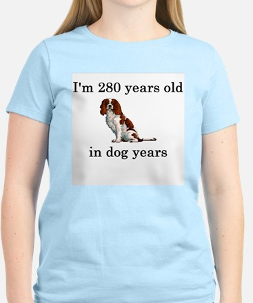40 birthday dog years springer spaniel T-Shirt