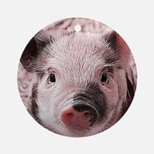 sweet piglet, pink Ornament (Round)